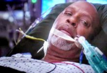 Grey's Anatomy: Recensione episodio 10×03: Seal Our Fate